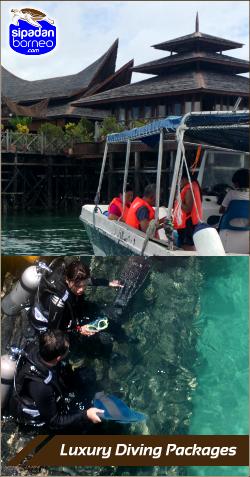 sipadanborneo luxury-diving